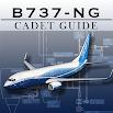 Boeing B737-8 NG Pilot Guide