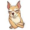 Cute Dog Stickers For WhatsApp