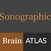 Sonographic Brain Atlas