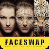 Face Swap & Morph Animation Maker