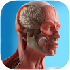 Anatomy Game Anatomicus Pro