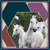 HexSaw - Horses