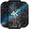 4K Wallpapers - Auto Wallpaper Changer 1.6.6.2