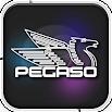 Pegaso Plus 4.80.006
