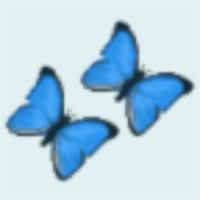 Butterfly Theme 99k