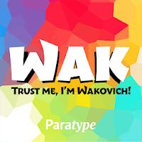 Wak Latin and Cyrillic FlipFont 139k