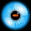 eyeGymVR 204