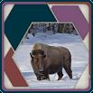 HexSaw - Yellowstone 1.0.15