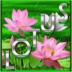 Free Lotus Go Launcher theme v4.4