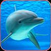 Dolphin Wallpaper HD 1.04
