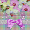 Tender Orchids theme 1.1