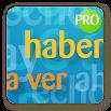 Spanish ortographic rules PRO 318k