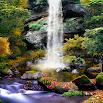 3D Autumn Waterfall Wallpaper 1.0.8