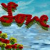 Love Flowers Live Wallpaper 3