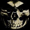 Skulls Theme A22