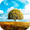 Awesome-Land 2 live wallpaper : Plant a Tree !! 2.1.2