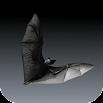 Bat Sounds 1.0