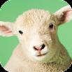 Sheep Sounds 1.0
