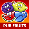 Reflex Gaming Pub Fruits 2.0.5