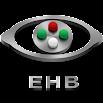Eye Handbook 10.1.5