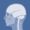 Head Atlas 2.33