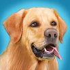 Dog Run 1.2.1