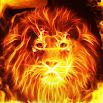Fire Lion - Live Wallpaper + Keyboard Background 4.22
