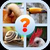 Animal Body Parts Quiz Game 8.8.4z